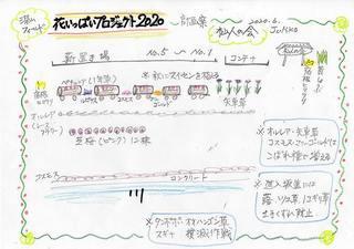 200603_04.jpg